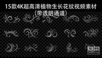欧式古典花纹花藤开放生长视频