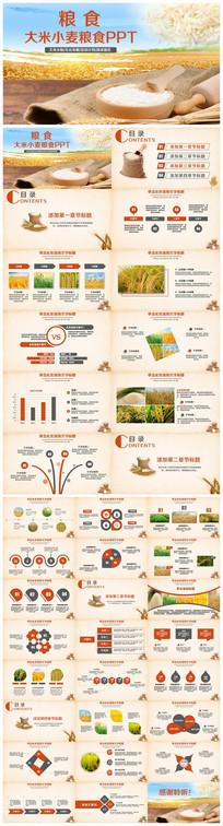 大米小麦五谷杂粮粮食农产品PPT