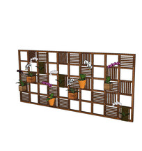 蝴蝶兰盆栽墙