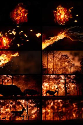 火灾火烧森林CG动画视频