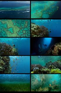 唯美海面海洋海底视频