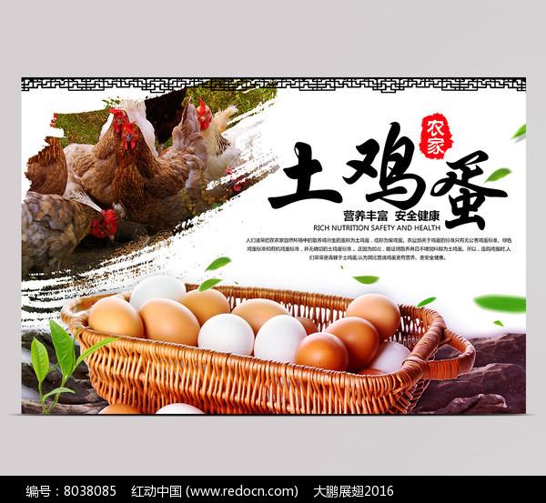 土鸡蛋海报设计图片