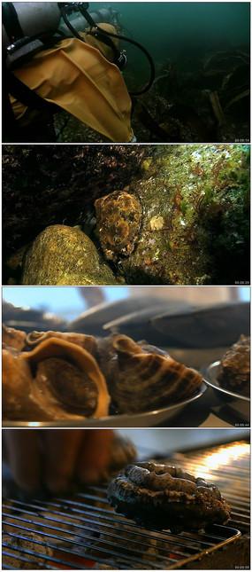 潜水员潜入深海捕捉视频实拍