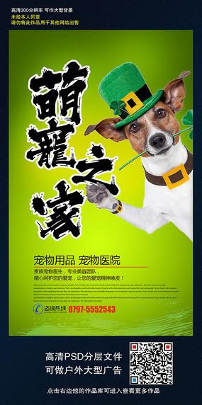 宠物海报设计