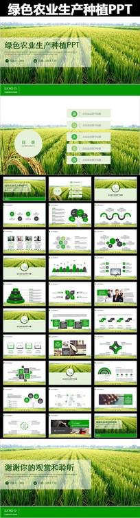 绿色农业生产种植农业局工作动态PPT