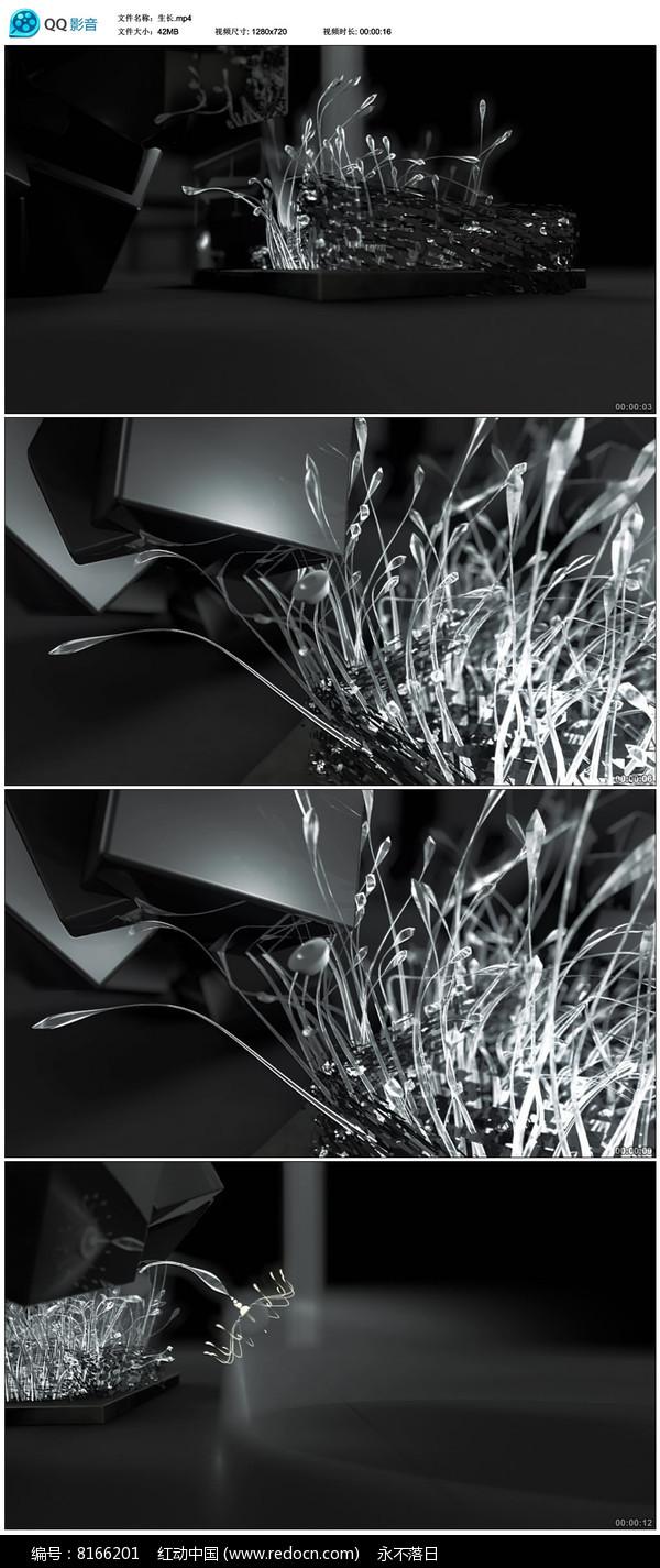 金属花纹枝条生长视频素材图片