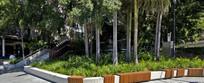 热带树池花园景观意向图