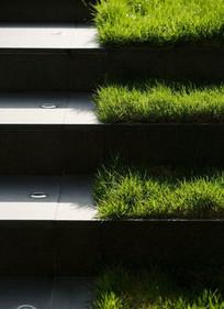 台阶及其绿化景观意向图