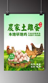 绿色健康土鸡蛋宣传广告海报
