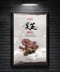中国风水墨简约灵芝名贵中药材海报