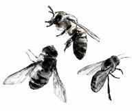 手绘水墨风格蜜蜂黑白素材