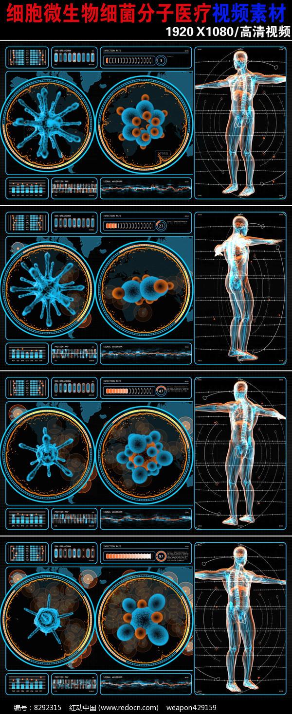 大气细胞细菌人体医学背景视频素材下载图片