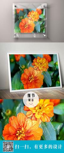 橙色立体花朵装饰无框画
