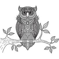 黑白手绘猫头鹰装饰画