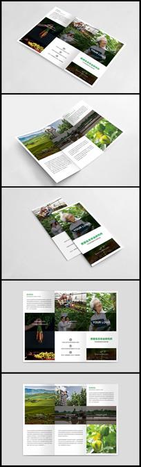 生态农业招商宣传三折页设计