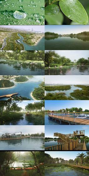 公园规划布局生态绿色视频