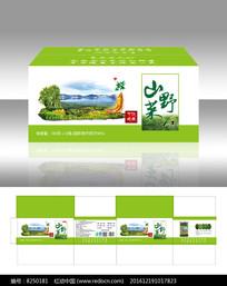 简约清新山野菜土特产包装设计