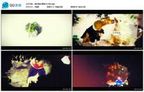 AECS6水墨图文写真视频