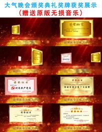 晚会颁奖典礼奖牌展示AE模板