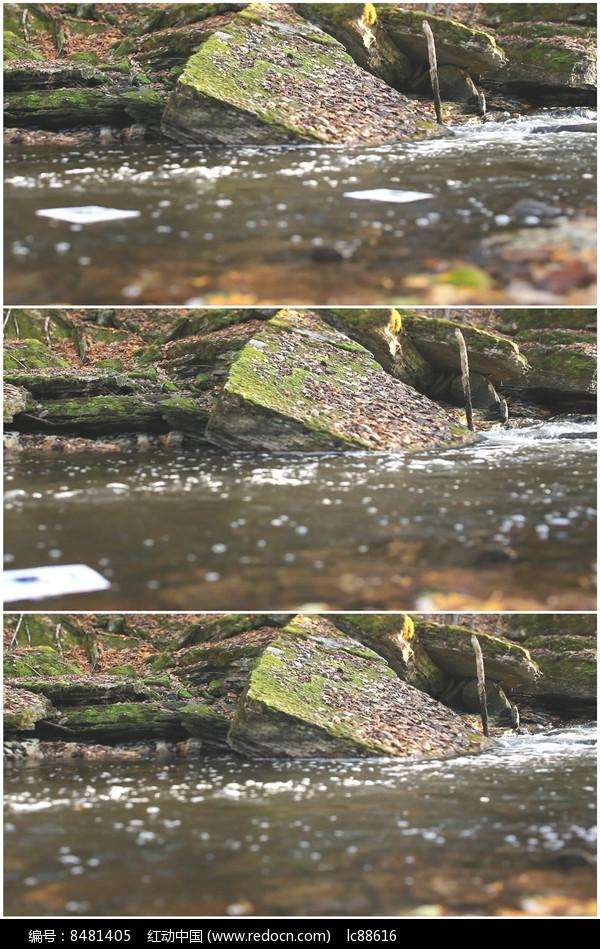 山涧河水河边岩石特写实拍视频图片