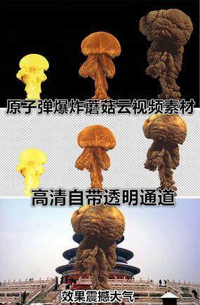 蘑菇视频视频素材