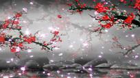 高清背景红梅花开优雅飘落视频