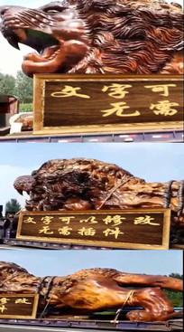 狮子牌匾微信小视频模板