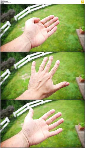 手掌手心手背