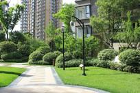 住宅区绿化景观意向图