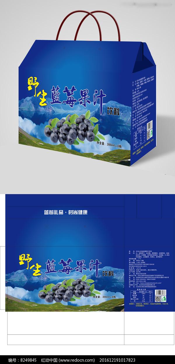 经典蓝莓果汁饮料包装设计图片