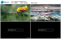AECS6多元素节奏玻璃展示视频