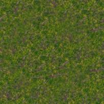 草坪平面贴图