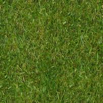 草坪材质贴图
