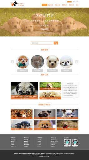 橙色风格宠物网站宠物网页设计