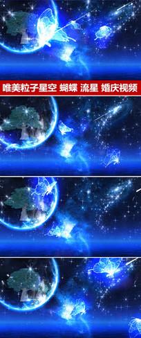 星空流星雨光效蝴蝶婚礼视频