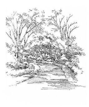 园林小路手绘表现 JPG
