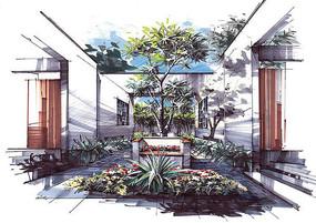景观庭院手绘效果图