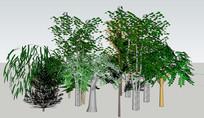 柳树3D素材集合