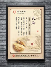 中医院文化墙展板