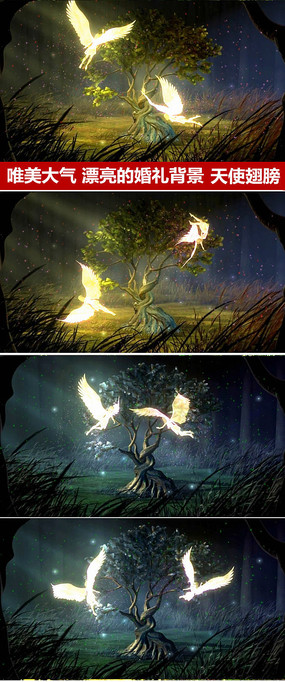 唯美森系背景天使翅膀动态视频