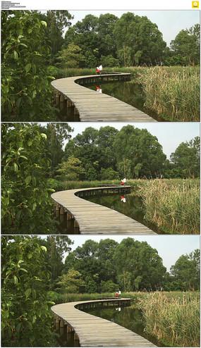 香港湿地公园小路实拍视频素材