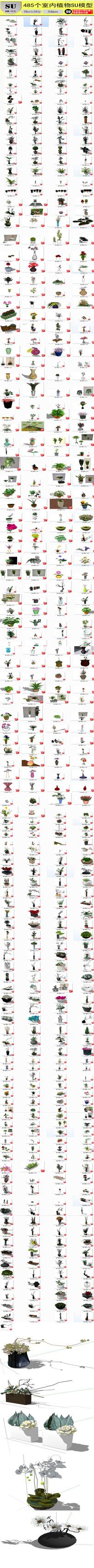 室内植物盆栽花草SU模型