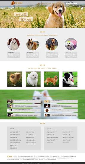 宠物用品网站模板