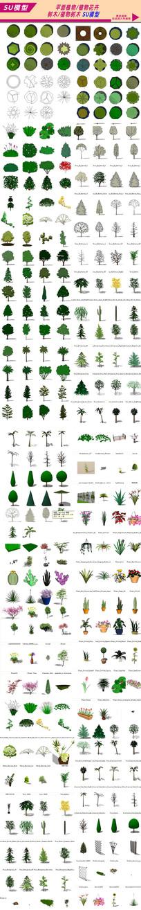 植物花卉模型大全
