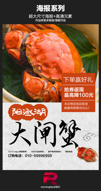 中国风阳澄湖大闸蟹海报设计