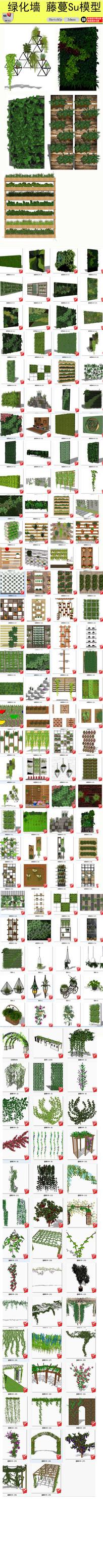 绿植墙藤蔓SU模型
