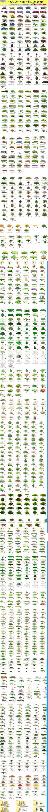 植物树木花草花卉SU模型合集