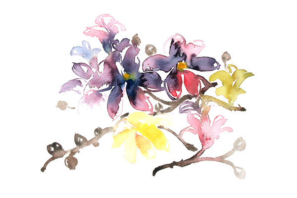 装饰花卉插画