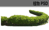 绿篱ps素材