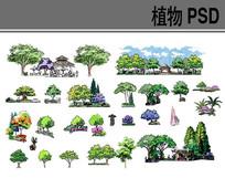 手绘植物PSD分层素材